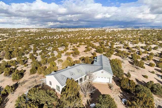 110 Sierra Azul, Santa Fe, NM 87507 (MLS #202005218) :: Neil Lyon Group   Sotheby's International Realty