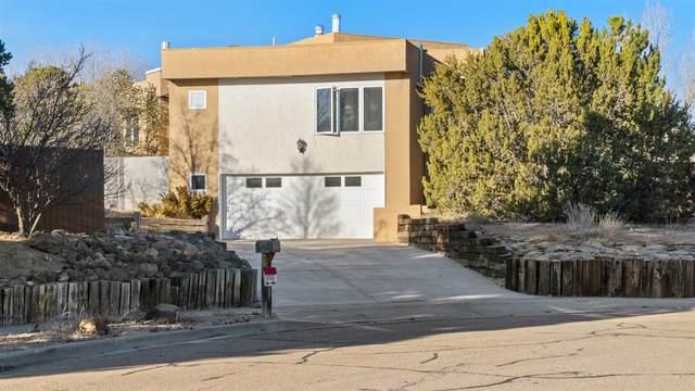 433 Luisa Lane, Santa Fe, NM 87505 (MLS #202100084) :: Neil Lyon Group | Sotheby's International Realty