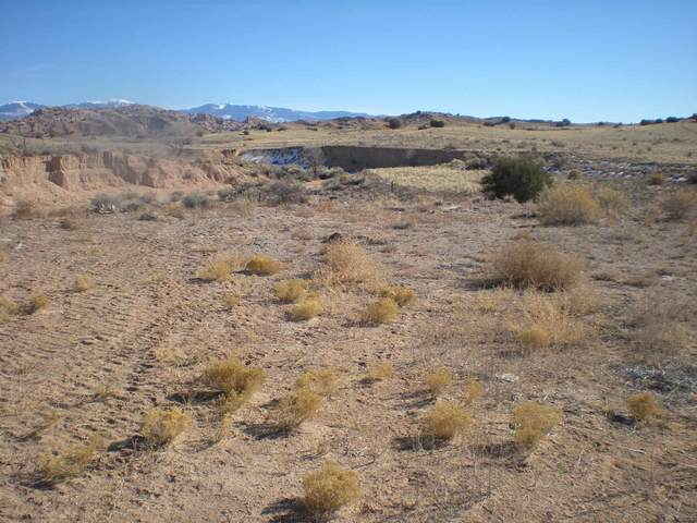 TBD County Road 111, La Mesilla, NM 87532 (MLS #202100171) :: Stephanie Hamilton Real Estate