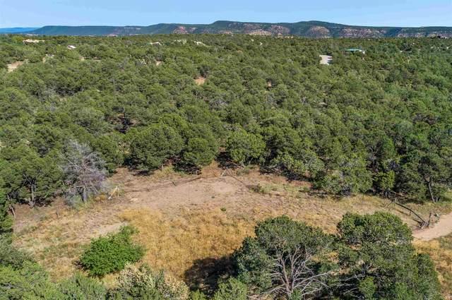 33 Cresta Pequena, Santa Fe, NM 87505 (MLS #202100178) :: Stephanie Hamilton Real Estate