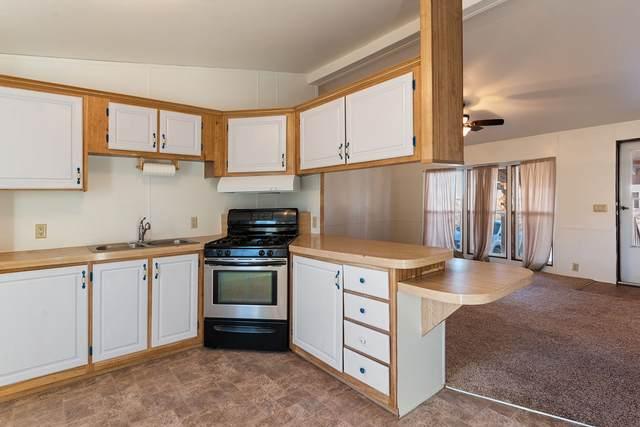 730C Camino Porvenir, Santa Fe, NM 87505 (MLS #202100445) :: Neil Lyon Group   Sotheby's International Realty