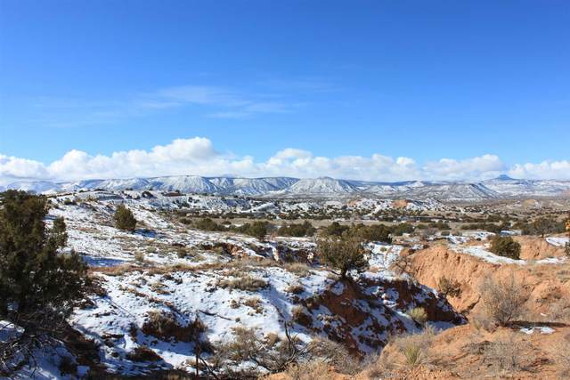 152/154 Apache Trail, Abiquiu, NM 87548 (MLS #202100559) :: The Very Best of Santa Fe