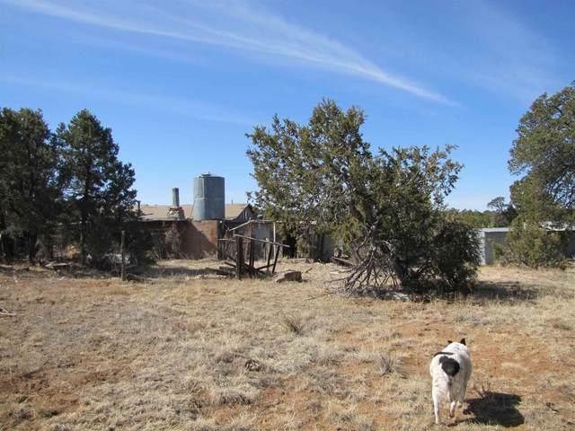 212 Ojo De La Vaca Trail, Santa Fe, NM 87508 (MLS #202100947) :: The Very Best of Santa Fe