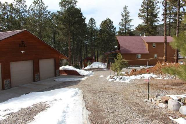585E Nm State Road 512, Chama, NM 87520 (MLS #202101009) :: Stephanie Hamilton Real Estate