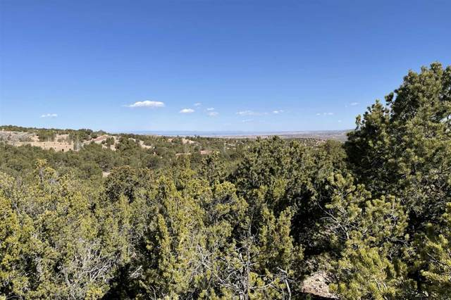 2974 Tesuque Overlook - Lot 153, Santa Fe, NM 87506 (MLS #202101132) :: Summit Group Real Estate Professionals