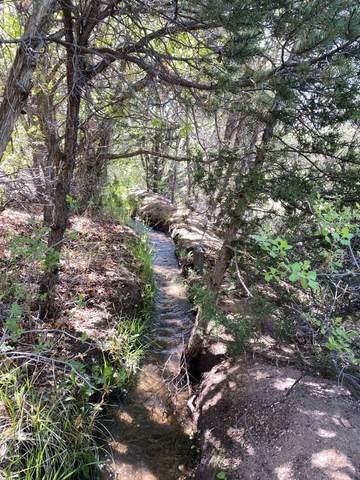 30 Sendero Del Oso, Santa Fe, NM 87506 (MLS #202101242) :: The Very Best of Santa Fe