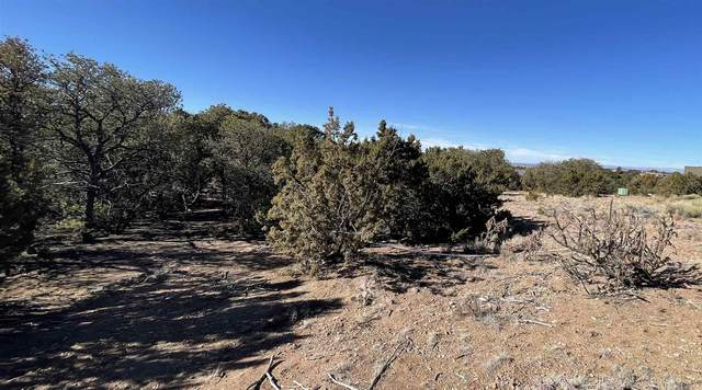 1884 Conejo Drive, Santa Fe, NM 87505 (MLS #202101244) :: Neil Lyon Group | Sotheby's International Realty