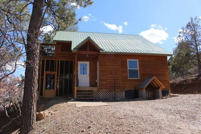 37 Rim Drive, Rutheron, NM 87551 (MLS #202101272) :: Summit Group Real Estate Professionals