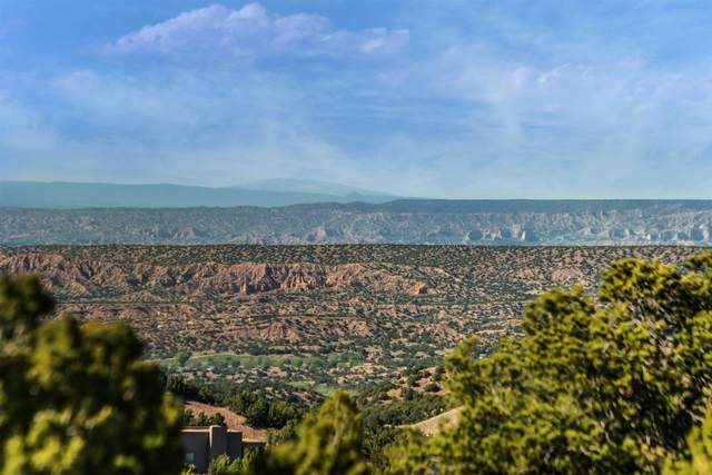117 Valle Sereno Lot 202, Santa Fe, NM 87506 (MLS #202101291) :: Neil Lyon Group | Sotheby's International Realty