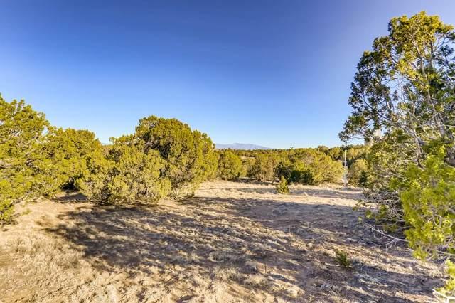 50 Via Pampa, Santa Fe, NM 87506 (MLS #202101364) :: The Very Best of Santa Fe