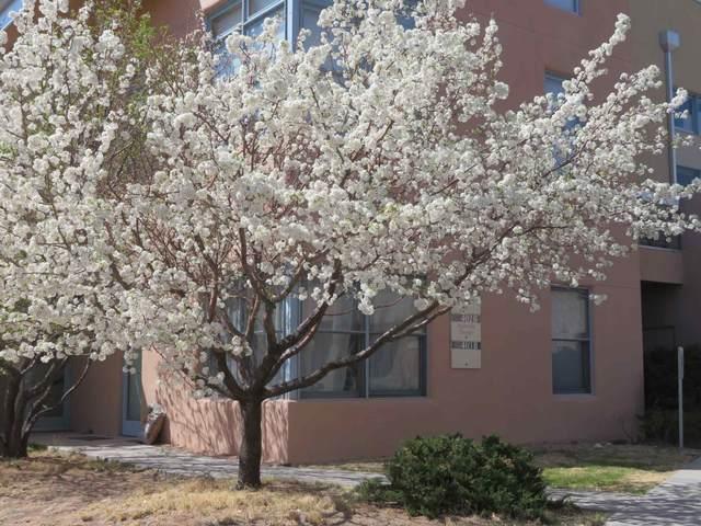 3600 Cerrillos 401A, Santa Fe, NM 87507 (MLS #202101373) :: Summit Group Real Estate Professionals