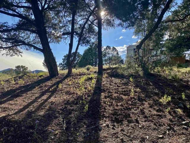 33 Sendero Alto, Santa Fe, NM 87505 (MLS #202101573) :: Neil Lyon Group | Sotheby's International Realty