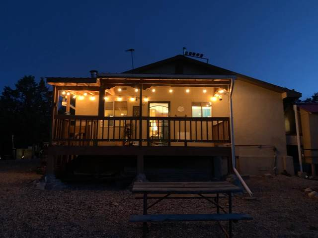 125 Private Stage Coach Road, Tierra Amarilla, NM 87575 (MLS #202101789) :: The Very Best of Santa Fe