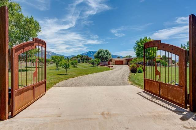 55 Vista Lejos, Taos, NM 87571 (MLS #202101881) :: Summit Group Real Estate Professionals
