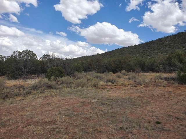 3333 Jumano Trail, Mountainair, NM 87036 (MLS #202102089) :: Berkshire Hathaway HomeServices Santa Fe Real Estate