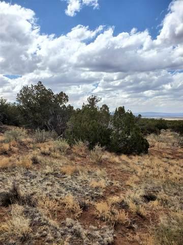 3441 Jumano Trail, Mountainair, NM 87036 (MLS #202102090) :: Berkshire Hathaway HomeServices Santa Fe Real Estate