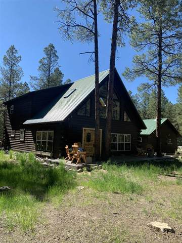 7 Hollow Oak Dr, Chama, NM 87520 (MLS #202102132) :: Summit Group Real Estate Professionals