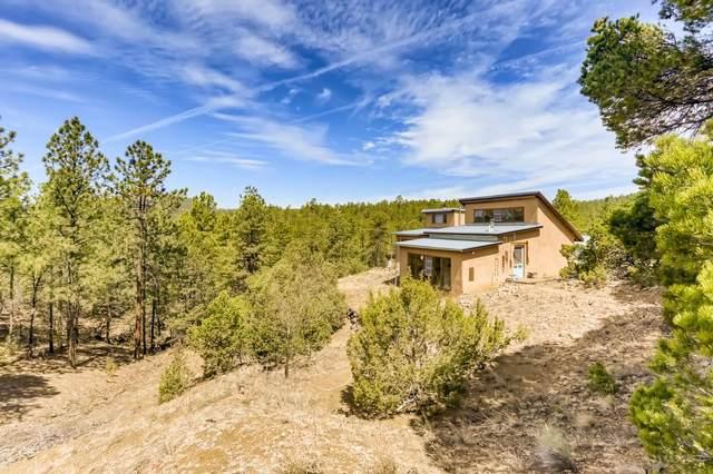 53 A Old Forest Trail, Santa Fe, NM 87505 (MLS #202102348) :: Stephanie Hamilton Real Estate