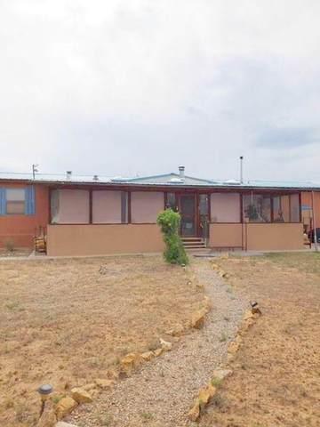 50 Redondo Dr, Ranchos Del Vado Sd, Tierra Amarilla, NM 87575 (MLS #202102696) :: Summit Group Real Estate Professionals