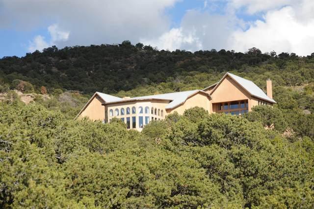 51 Coyote Mountain Road, Santa Fe, NM 87505 (MLS #202102942) :: Stephanie Hamilton Real Estate