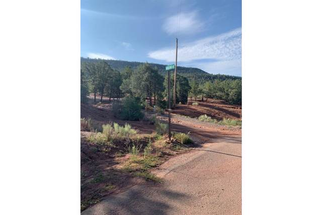 98 Valencia Ranch Road, Glorieta, NM 87535 (MLS #202103241) :: The Very Best of Santa Fe