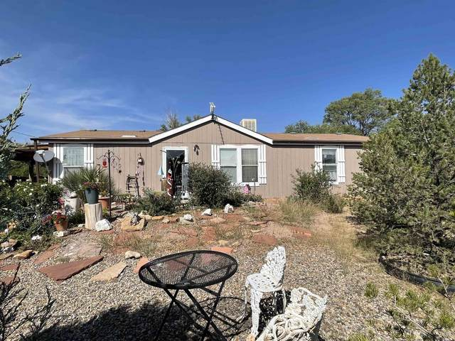 3 Montoya Heights, Cerrillos, NM 87010 (MLS #202104098) :: Neil Lyon Group | Sotheby's International Realty