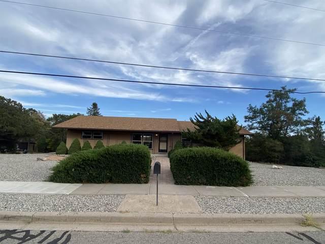 1091 Barranca, Los Alamos, NM 87544 (MLS #202104231) :: Summit Group Real Estate Professionals
