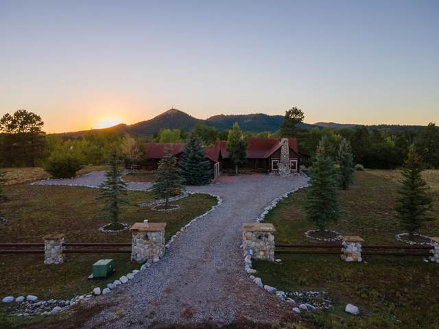 1889 Sage Drive, Chama, NM 87520 (MLS #202104309) :: The Very Best of Santa Fe