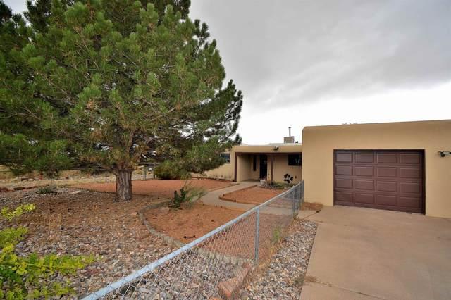 3338 La Avenida De San Marcos, Santa Fe, NM 87507 (MLS #202104618) :: Neil Lyon Group   Sotheby's International Realty
