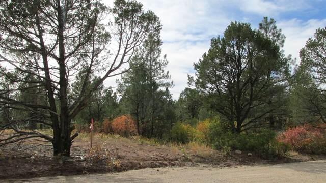 8 Los Nidos Lane, Pecos, NM 87552 (MLS #202104696) :: Stephanie Hamilton Real Estate