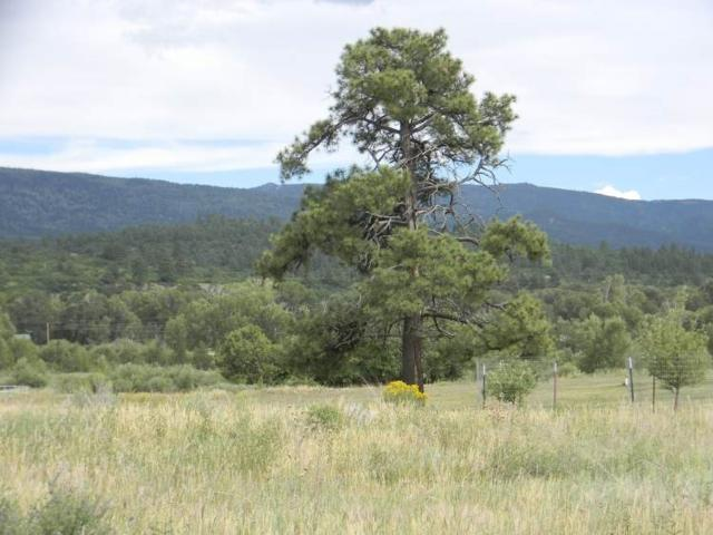 Lot 30 Dos Rios Drive, Chama, NM 87520 (MLS #201700320) :: Berkshire Hathaway HomeServices Santa Fe Real Estate