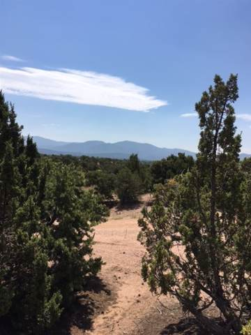 844 Calle David, Santa Fe, NM 87506 (MLS #201703102) :: The Very Best of Santa Fe