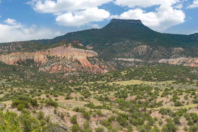 CR 194 Canones, Abiquiu, NM 87516 (MLS #201703538) :: The Bigelow Team / Realty One of New Mexico