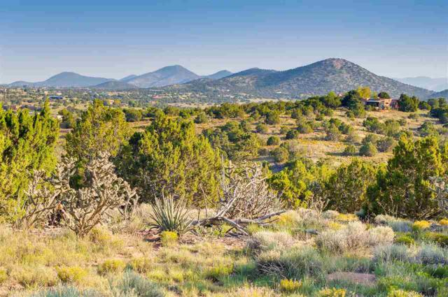 84 Camino Acote Lot 16, Santa Fe, NM 87508 (MLS #201703995) :: The Desmond Group