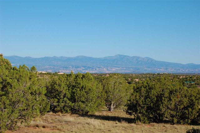 64 Heartstone Drive, Santa Fe, NM 87506 (MLS #201704064) :: The Desmond Group