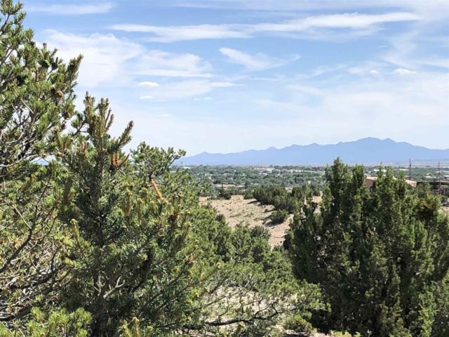 1703 Painted Sky, Santa Fe, NM 87507 (MLS #201901076) :: The Very Best of Santa Fe