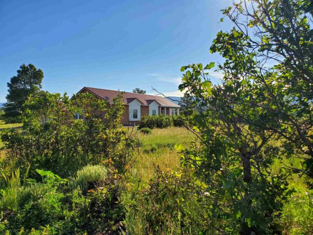 2518 Dos Rios Drive, Chama, NM 87520 (MLS #201901653) :: The Desmond Group