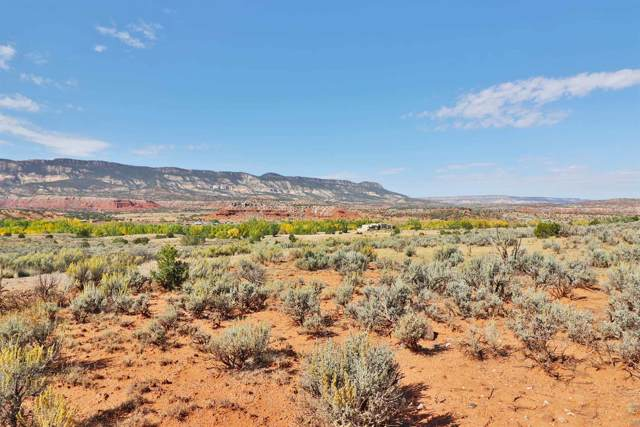 193 County Road 203, Youngsville, NM 87064 (MLS #201902988) :: The Desmond Hamilton Group