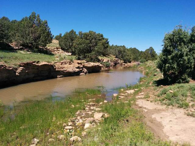927 Sofia Road, Clayton, NM 88424 (MLS #201903198) :: The Very Best of Santa Fe