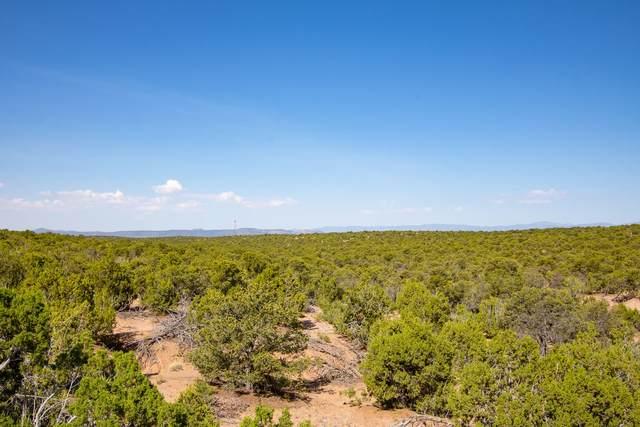 1793 NW Calle Arbolitos (Land), Santa Fe, NM 87506 (MLS #202000548) :: Summit Group Real Estate Professionals