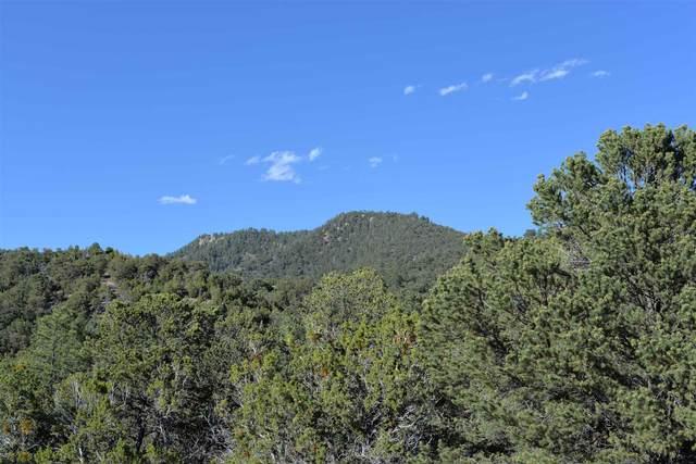 1686 Wilderness Gate Rd, Santa Fe, NM 87505 (MLS #202001455) :: Summit Group Real Estate Professionals