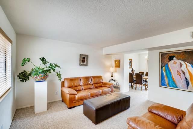 2731 Calle Serena, Santa Fe, NM 87505 (MLS #202001730) :: The Desmond Hamilton Group