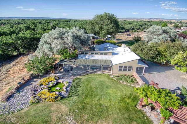 50 Private Drive 1147, Espanola, NM 87532 (MLS #202002650) :: Summit Group Real Estate Professionals