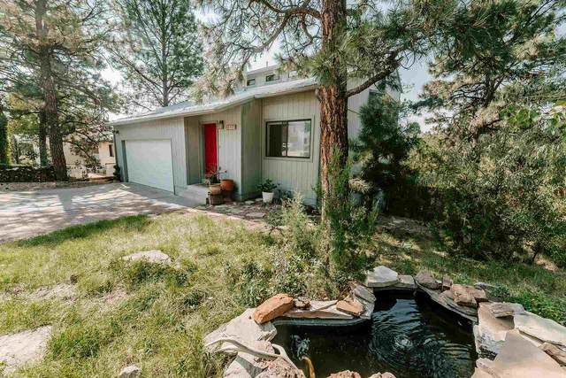 1379 Big Rock Loop, Los Alamos, NM 87544 (MLS #202003383) :: Berkshire Hathaway HomeServices Santa Fe Real Estate