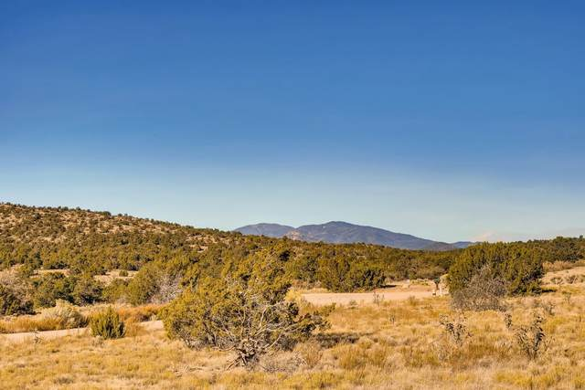 176 Principe De Paz, Santa Fe, NM 87508 (MLS #202004482) :: Summit Group Real Estate Professionals