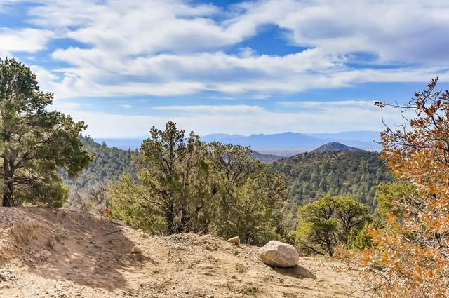 82 Ridge Road, Santa Fe, NM 87505 (MLS #202004710) :: The Very Best of Santa Fe