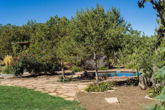 104 Calle Paula, Santa Fe, NM 87505 (MLS #202004806) :: Stephanie Hamilton Real Estate