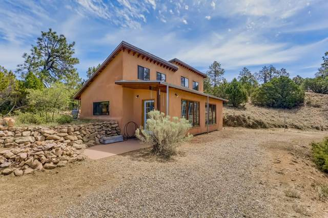 53 B Old Forest Trail, Santa Fe, NM 87505 (MLS #202102347) :: Stephanie Hamilton Real Estate