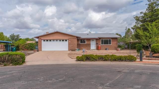 2301 Callejon Hermosa, Santa Fe, NM 87505 (MLS #202104302) :: Stephanie Hamilton Real Estate