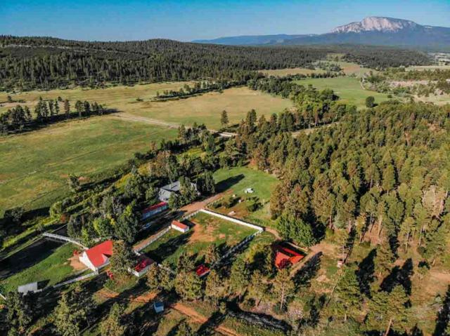 Sweet Pea Ranch, Sapello, NM 87745 (MLS #201700096) :: The Very Best of Santa Fe